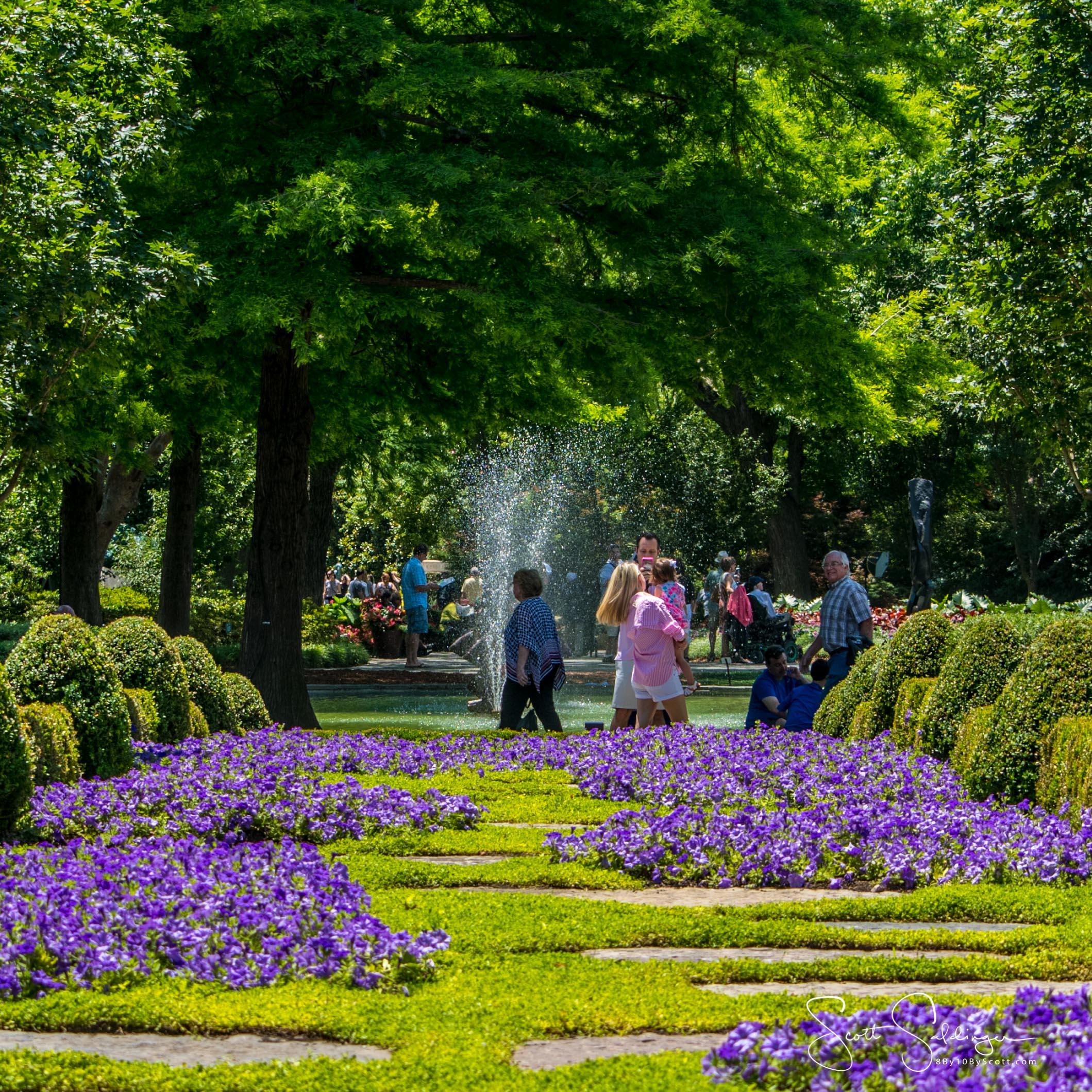 Arboretum51417-2958